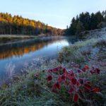 В Кировской области объявлено метеопредупреждение: ожидаются заморозки до -3°С