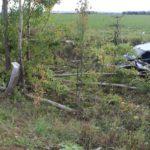 В Куменском районе бесправник на «ВАЗе» вылетел в кювет и врезался в дерево