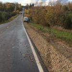 В Лебяжском районе водитель «ВАЗа» опрокинулся в кювет: пострадали два человека
