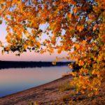 Синоптики: «Бабье лето» в Кировской области продлится до 14 сентября