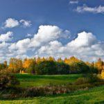 На неделе жителей Кировской области ждет потепление