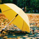 В выходные в Кировской области ожидается переменная облачность и дожди