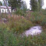 В Куменском районе в реку сливают производственные отходы