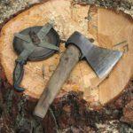 В Афанасьевском районе возбуждено уголовное дело по факту незаконной рубки леса на сумму более 350 тысяч рублей