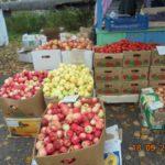 В Мурашах житель Чувашской Республики торговал фруктами и овощами без фитосанитарных документов