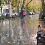 Жителей Кировской области ожидает прохладная и дождливая неделя: синоптики рассказали, когда ждать первого снега