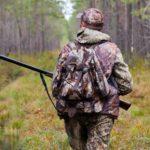 В Кировской области открылась охота на лисицу и зайца: известны районы, где больше всего зайца-беляка