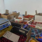 В Опарино обнаружили реализацию фруктов, ягод и овощей без сопроводительных документов