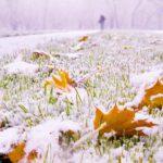 В Кировской области выпал первый снег: в регионе ожидается резкое похолодание