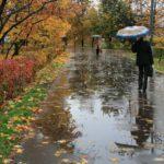 В выходные жителей Кировской области ожидает пасмурная и прохладная погода: ночью вероятны заморозки