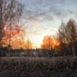 Жителей Кировской области ожидает дождливая и ветреная неделя