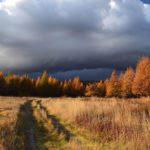На Кировскую область надвигаются два атлантических циклона