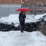 Жителей Кировской области ожидает неделя плюсовых температур и осадков в виде дождя