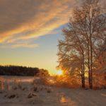 Синоптики рассказали, когда жителям Кировской области ждать потепления