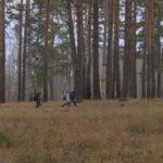 Двенадцать километров пешком каждый день: детям в Кировской области не дают школьный автобус