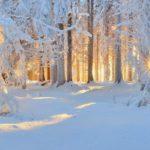 Синоптики рассказали, когда в Кировскую область придут морозы до -29°С