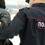 В Кирове обматеривший полицейского мужчина осужден на 7 месяцев исправительных работ
