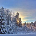 Синоптики рассказали, какая погода будет в декабре и на Новый год в Кировской области