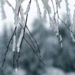 В выходные жителей Кировской области ждет мокрый снег с дождем и ветер