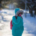 Синоптики рассказали, как долго продержится мороз в Кировской области