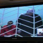 В Кирове суд отменил приговор фигурантам дела о хищениях в «Электронном проездном»
