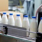 Экспертиза подтвердила, что в детские сады Кирова поставлялось молоко ненадлежащего качества