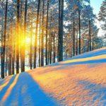К выходным в Кировской области похолодает до -20°C