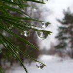 Погода на неделю: синоптики обещают оттепель