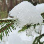 Синоптики рассказали, какая погода ждет жителей Кировской области на выходные