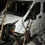 В Арбажском районе водитель «Газели» вылетел в кювет