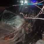 В Кирово-Чепецком районе водитель «УАЗ Патриота» врезался в дерево