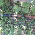 72-летний житель Богородского района, попытавшийся застрелить свою дочь и жену, признан невменяемым