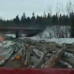 В Кирове упавшие с лесовоза бревна чуть не задавили легковой автомобиль