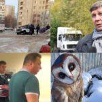 Итоги недели: скованные льдом улицы городов, «дорожные» деньги и заболеваемость ОРВИ