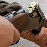 До двух лет лишения свободы грозит жителю Свечинского района за незаконно добытого лося
