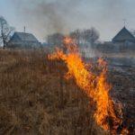 За прошедшие сутки на территории Кировской области зафиксировано 5 ландшафтных пожаров
