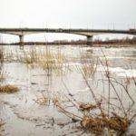 За последние сутки вода в Вятке поднялась на 31 сантиметр