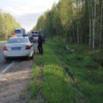 В Юрьянском районе пьяный 18-летний бесправник вылетел на мотоцикле в кювет