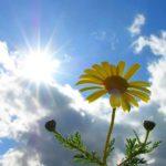В Кировской области ожидается аномально теплая погода