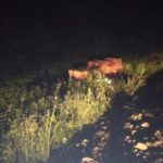 В Оричевском районе водитель катка съехал в кювет