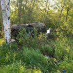 В Котельничском районе в результате ДТП погибла женщина