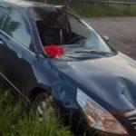 В Шабалинском районе водитель «Ниссана» сбил лося