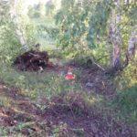 В Вятскополянском районе пьяный водитель «Форда» врезался в дерево: погиб мужчина-пассажир