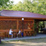 В Кировской области возобновят работу летние кафе, библиотеки и музеи