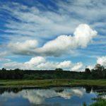 В субботу жителей Кировской области ожидает переменная облачность и +20°С