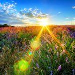 В четверг жителей Кировской области ожидает солнечный день