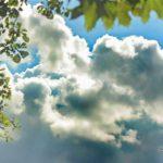 Синоптики рассказали, какая погода ожидает жителей Кировской области в пятницу