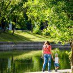 Жителей Кировской области ожидает теплый и солнечный день