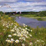 В конце недели жителей Кировской области ожидает похолодание