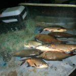 В Котельничском районе возбуждено уголовное дело в отношении женщины за незаконный вылов рыбы